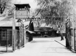 POLAND-HOLOCAUST-WWII-CONCENTRATION CAMP-AUSCHWITZ