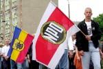NAZIS FLAGGEN