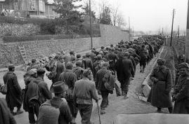 Hungarian prisoners of war